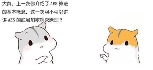 漫画:AES算法的底层原理