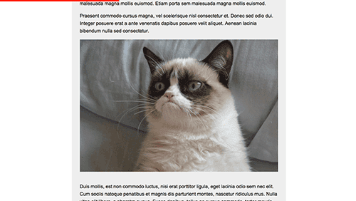 Scrollgress – 根据页面长度实现的阅读进度条插件
