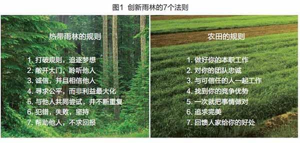 硅谷创新的雨林法则